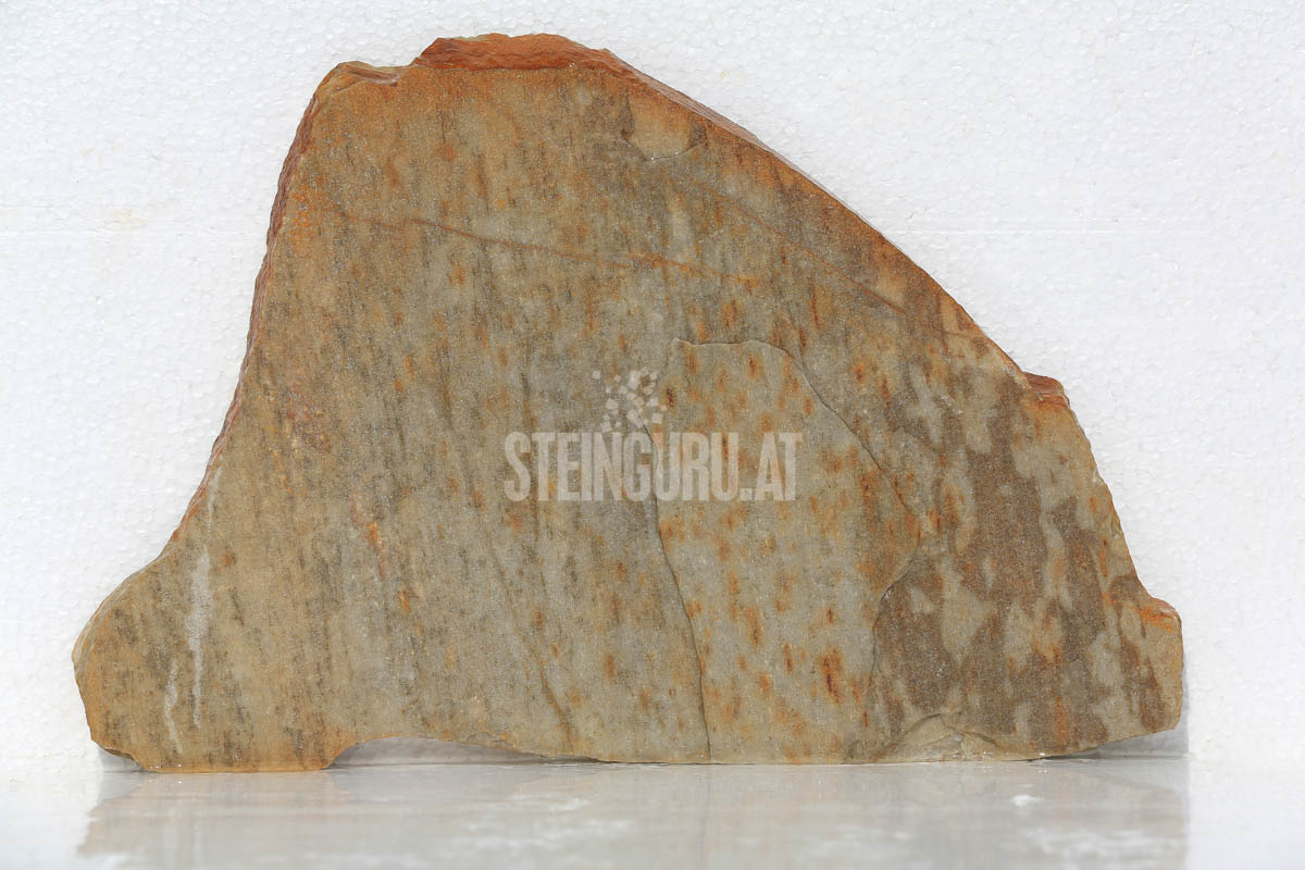 Steinguru-92