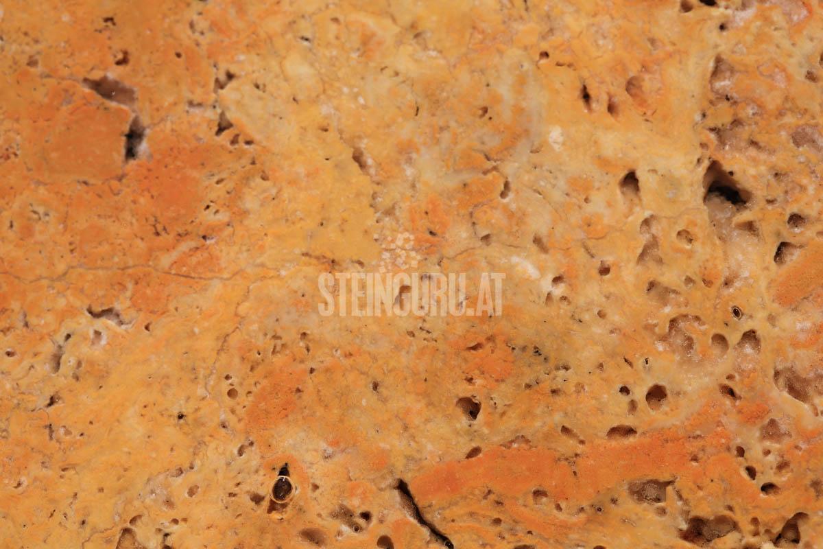 Steinguru-152