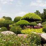 Gartenprojekt1