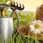 Gartengestaltung1